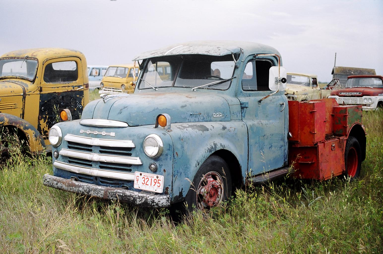 rust free 1950 Dodge 1 Ton